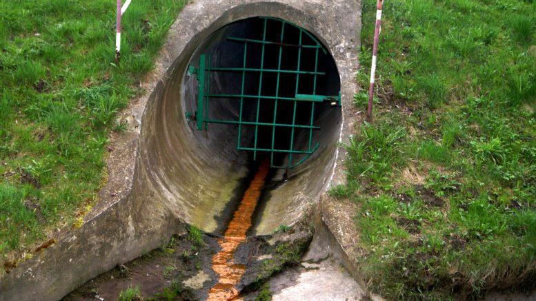 e coli in water - photo #37