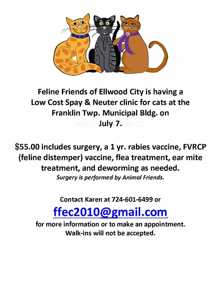 Low Cost Spay And Neuter Clinic For Cats Ellwood City